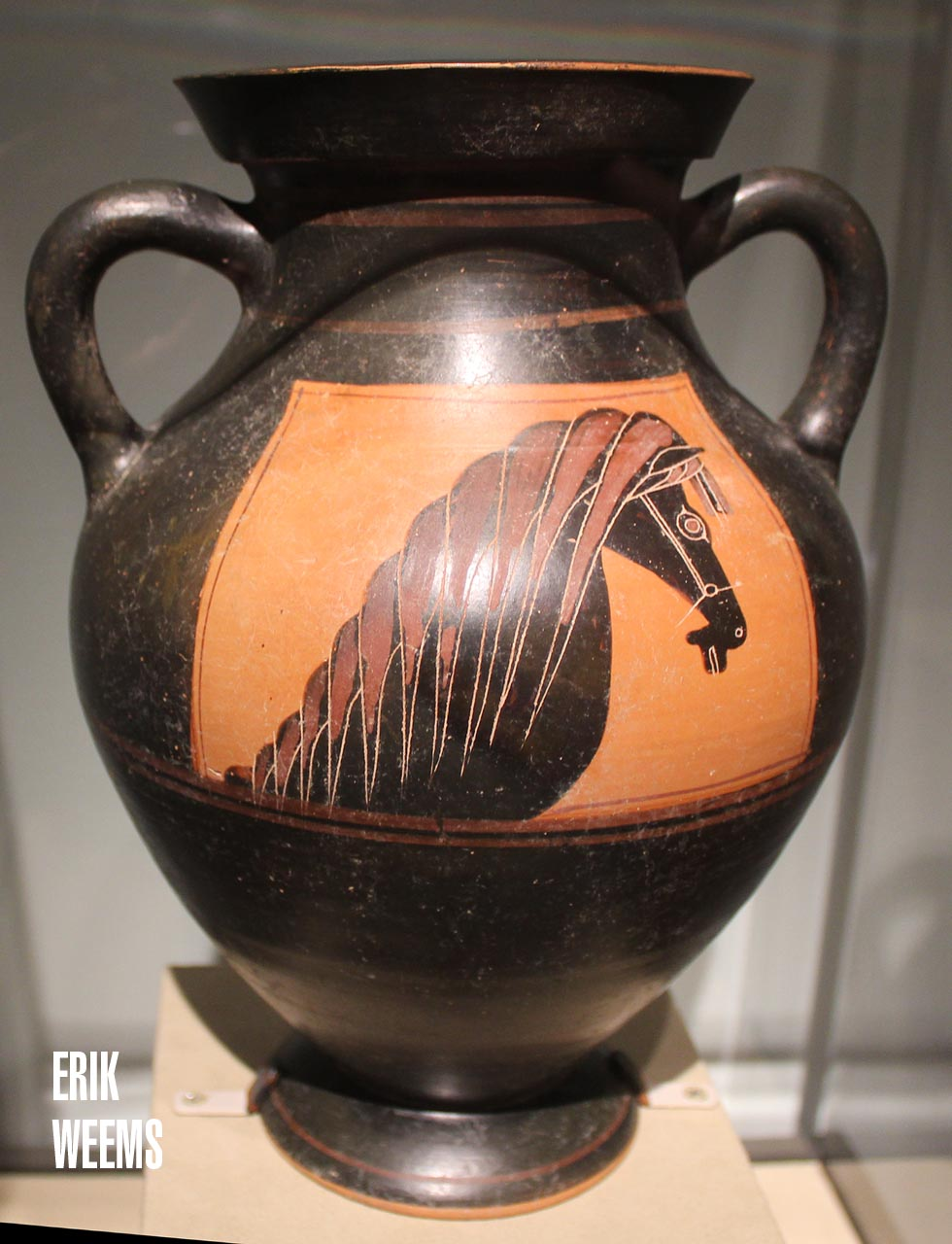 Horse Art Ancient Greece Vase