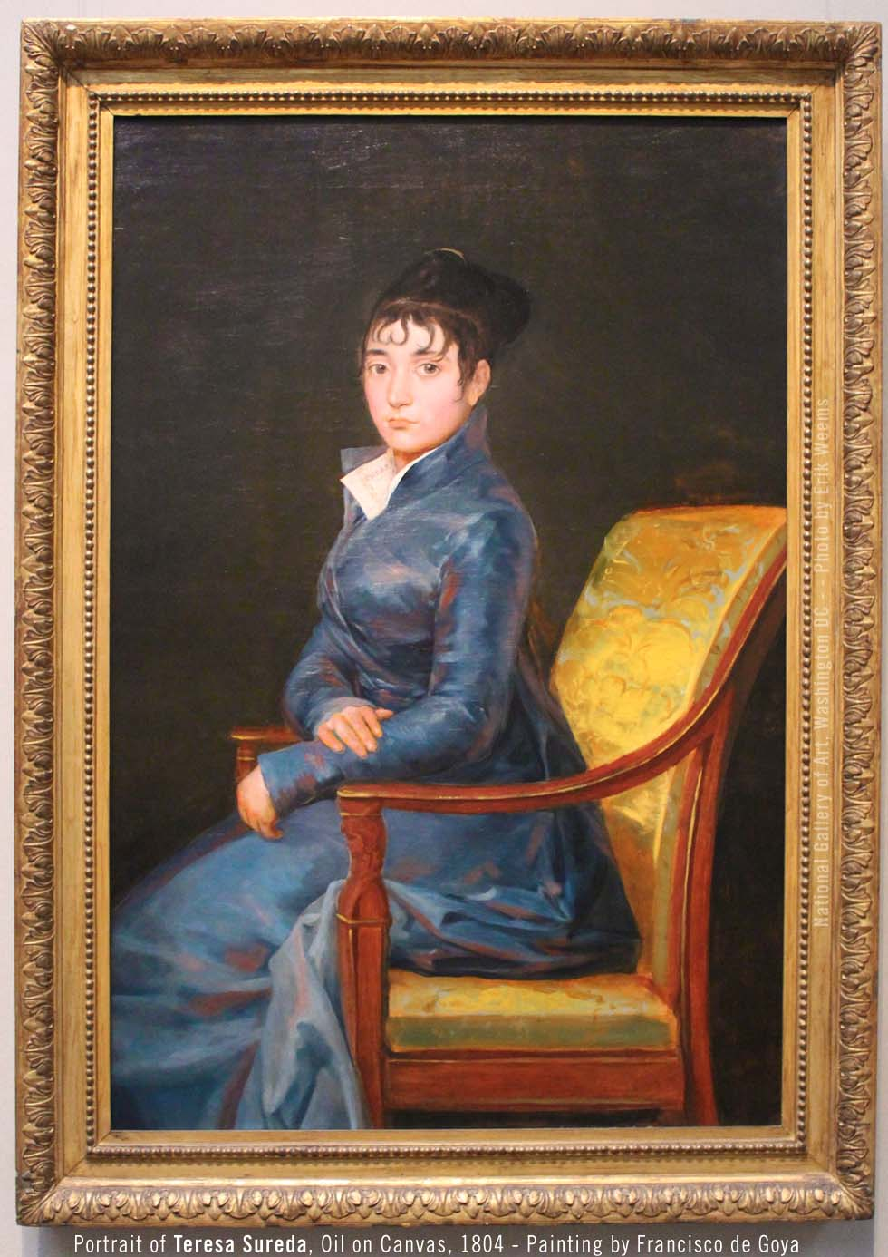 Teresa Sureda Portrait by Francisco de Goya 1804